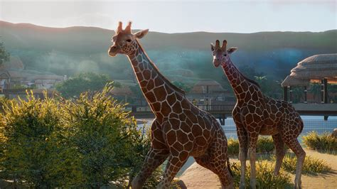 planet zoo preview animal crackers shacknews