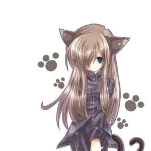 anime cat anime cat hd pictures