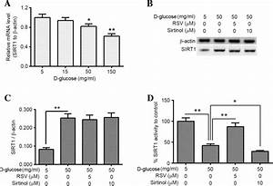 Sirt1 Activation Inhibits Hyperglycemia
