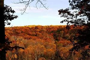 Shades State Park Waveland 2019 All You Need To Know