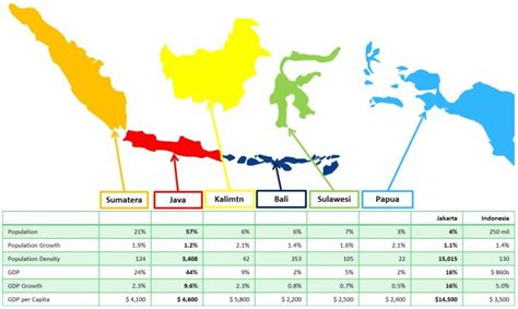 demographics  indonesia junglekeyin image