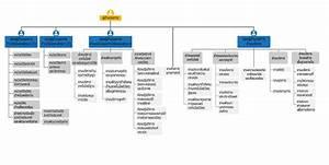 Organization Chart  U2022 Mtec A Member Of Nstda
