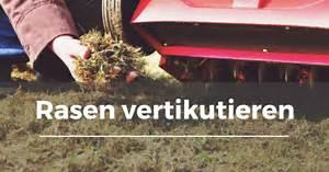 Rasen Vertikutieren Zeitpunkt : rasen vertikutieren garten schule ~ Orissabook.com Haus und Dekorationen