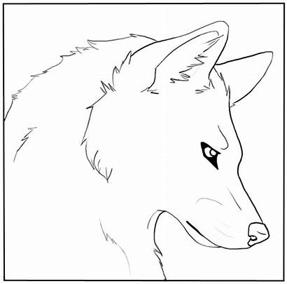Wolf Coloring Head Transparent Lineart Line Canine