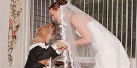 4 Orang Ini Kawin Dengan Binatang Seinfomu Blog Informasi