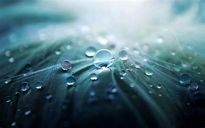 Water Nature Drops Wallpoper Wallpapers Desktop Background