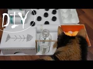 Katzenspielzeug Selber Machen Karton : kekse f r katzen selber machen diy leckerlis funnycat tv ~ Frokenaadalensverden.com Haus und Dekorationen