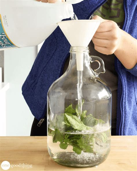 does vinegar clothes how to make a scented vinegar fabric softener rinse one good thing by jillee