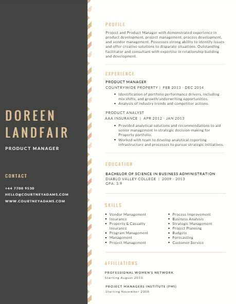 Professional Resume Ideas by 82 Best Resume Ideas Images On Professional
