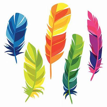 Feather Feathers Clipart Background Colourful Vector Colorful