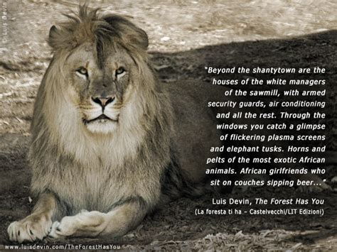 Leo The Lion Quotes