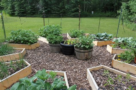 More Details On Building The Raised Beds In The Medicine