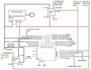Directed Db3 Wiring Diagram