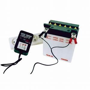 Chargeur De Batterie Feu Vert : chargeur automatique de batterie xl900 p le vert cugnaux ~ Dailycaller-alerts.com Idées de Décoration