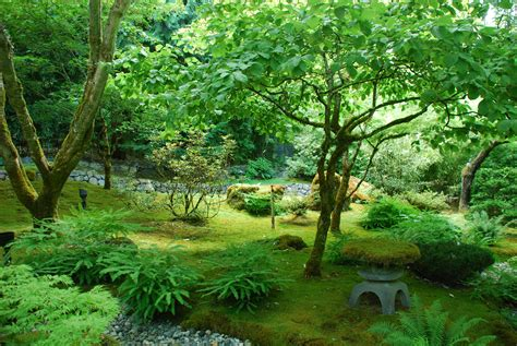 Peaceful Japanese Garden : Travel Wallpaper and Stock Photo