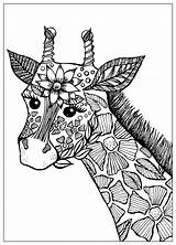 Giraffe Coloring Flowers Giraffes Head Adult Printable Adults Animals Mandala Animal Justcolor Stains Drawn Nature A4 Elephant sketch template