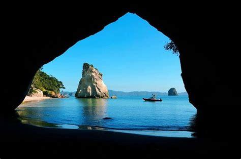 Glass Bottom Boat Whitianga Scenic Cruise by Leopard Tours Reviews Whitianga Coromandel