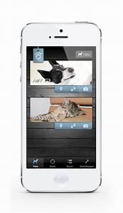 Mini Gps Tracker Test : gps sender tracker f r katzen im vergleich testsieger ~ Jslefanu.com Haus und Dekorationen
