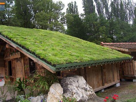 pasos  construir  pequeno techo verde