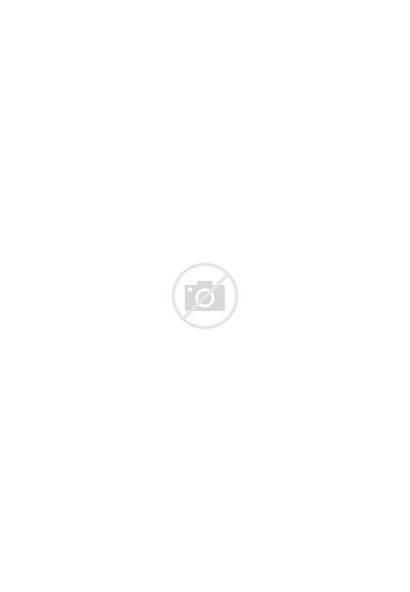 Halloween Cat Pumpkin Marker Sketch Happy Sitting