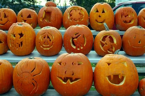 pictures to carve pumpkins pumpkins and jack o lanterns edible or not home family