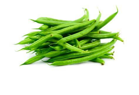 cuisiner haricots verts cuisiner des haricots verts en boite haricots verts kraft