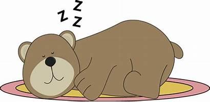 Bear Sleeping Clip Rug Preschool Animals Hibernate
