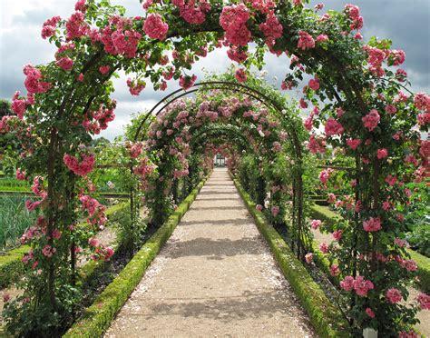 Rosestrellisgardendesign  Perth Landscaping