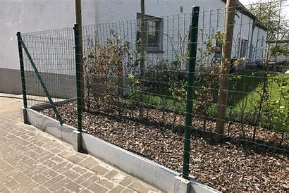 Wire Fence Panels Standard Examples Intruders Trustworthy