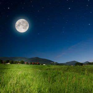 Jardiner Avec La Lune : jardiner avec la lune comment quand apprendre ~ Farleysfitness.com Idées de Décoration