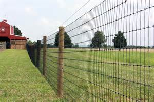 Fencing Horse Wire Fence
