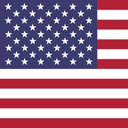 The United States flag vector - country flags
