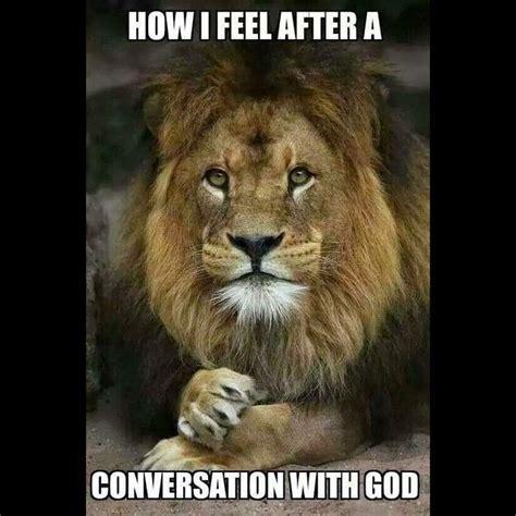 Lions Memes - 85 best images about lion memes on pinterest lion king meme the lion sleeps tonight and