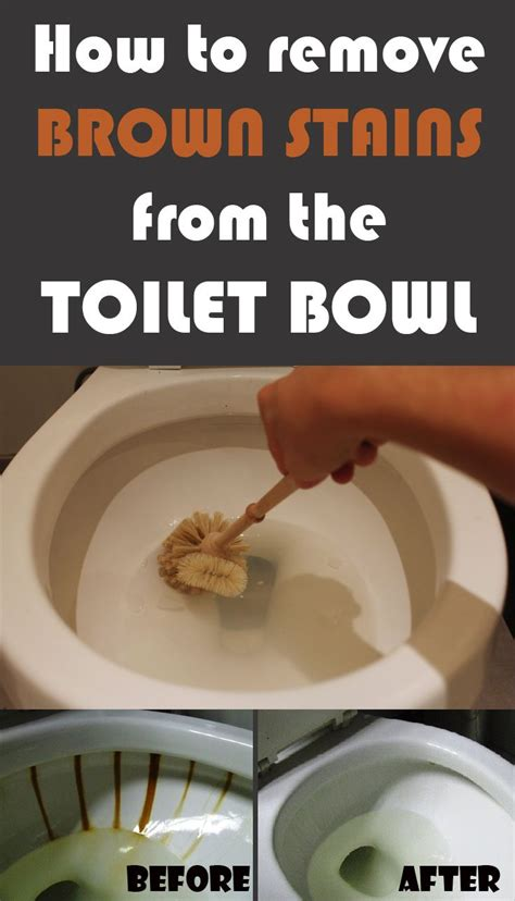 Toilet That Cleans Your Bottom by How To Remove Brown Stains From The Toilet Bowl Cleaning