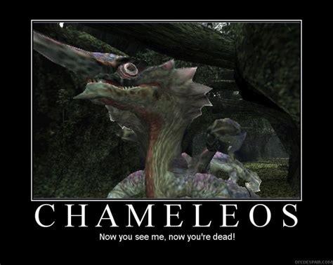 Monster Hunter Memes - 232 best monster hunter images on pinterest monster hunter monsters and videogames