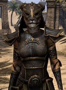 Elder Scrolls Online Khajiit Fell - ESO Fashion
