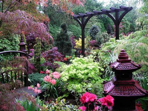 feng shui garden feng shui plants
