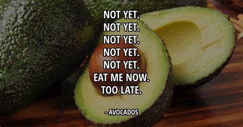 Avocado Memes - avocados meme picture webfail fail pictures and fail videos