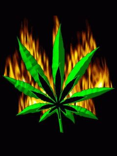 imagenes marihuanas ideas  pinterest simbolos