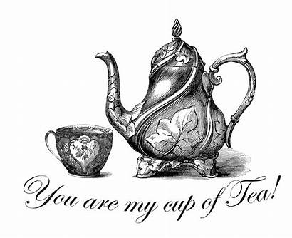 Printable Tea Down Rabbit Hole Teapots Graphics