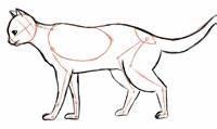 Wie Fange Ich Eine Katze : wie zeichne ich eine katze gedankenfreier fall ~ Markanthonyermac.com Haus und Dekorationen