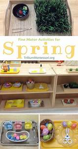 112 best Spring Learning Fun images on Pinterest