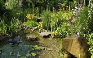 Biotop im garten anlegen umfassende tipps fur das natur for Garten planen mit natur sichtschutz balkon