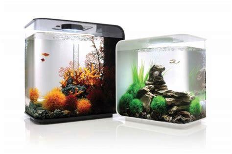 des aquariums design faciles d entretien m 233 lissa bradette toit et moi