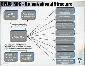 Organizational Chart Cplic Rrg