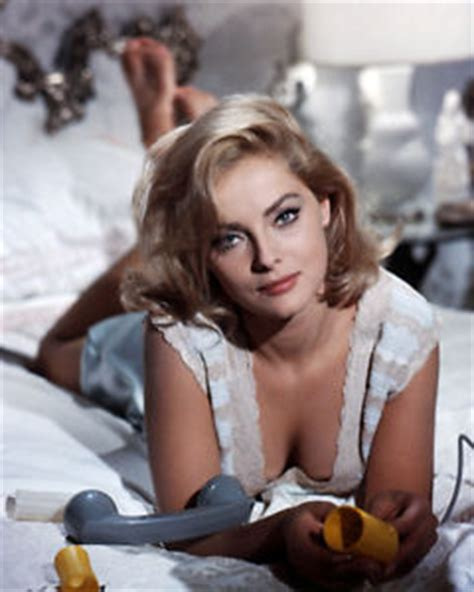 virna lisi stunning busty pose lying on bed photo or poster ebay