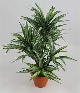 Grünpflanzen Im Topf : dracena 42cm gr n gelb im topf da k nstliche pflanzen ~ Michelbontemps.com Haus und Dekorationen