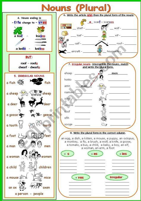 nouns plural worksheet  images plurals nouns