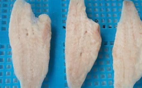 grouper fish benefits important health