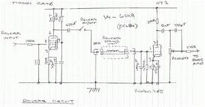 Do Most Tube Driven Reverb Circuits Use 8 Ohm Input Tanks